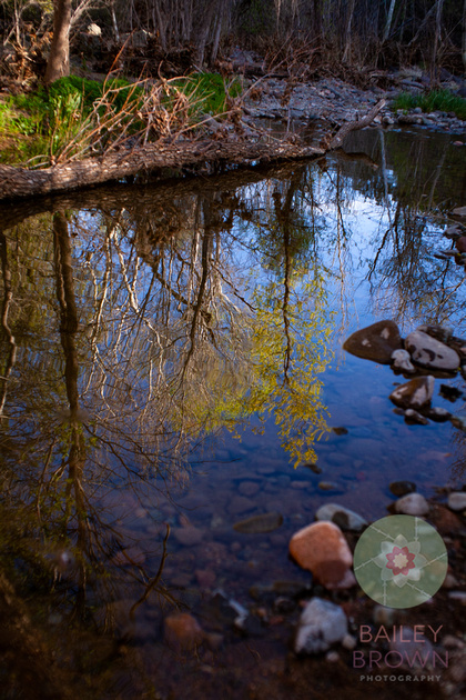 Spring photography of children enjoying a nature habitat.